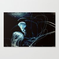 underwater secrets Canvas Print