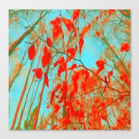 nature abstract 99999 Canvas Print