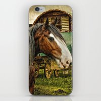 The Gypsy Vanner iPhone & iPod Skin