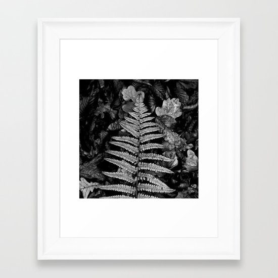 fern leaf VI Framed Art Print