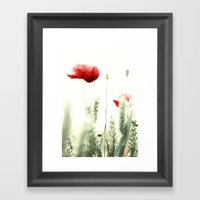 Poppy Poppies Mohn Mohnblume Framed Art Print