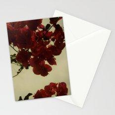 Floral Formula Polaroid Stationery Cards