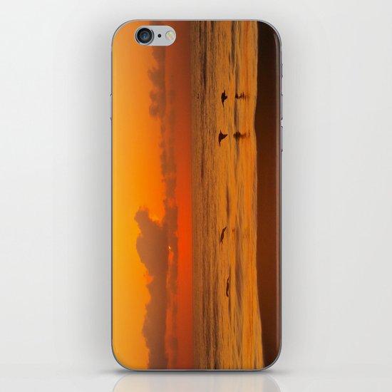 Four Pelican Sunrise iPhone & iPod Skin