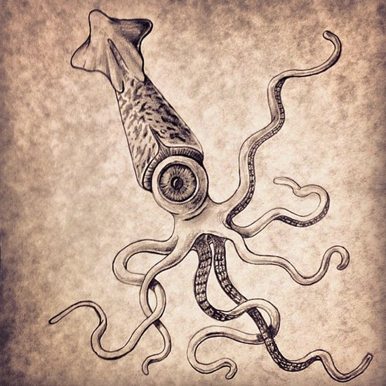 Squiddish Art Print