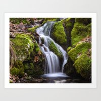Race Brook Glen 1 Art Print