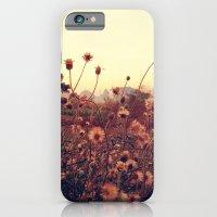 iPhone & iPod Case featuring Desert Dandelion by Pan Kelvin