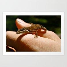 Lizard Art Print
