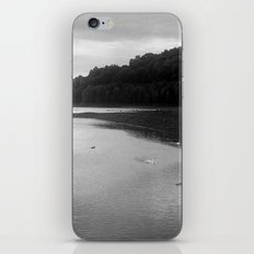 Peace of Swan Lake iPhone & iPod Skin