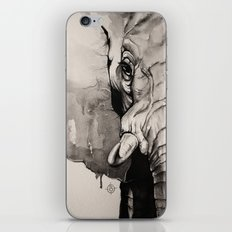 Watercolour Elephant iPhone & iPod Skin