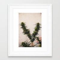 The V Framed Art Print