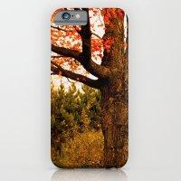Autumn Lights iPhone 6 Slim Case