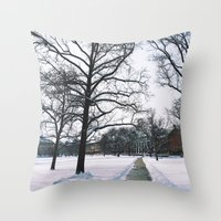 The Frozen Quad Throw Pillow