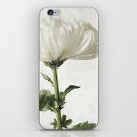 Just For You iPhone & iPod Skin