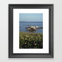 Shell Beach California Framed Art Print