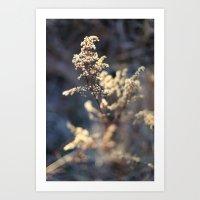 The Trail 1 Art Print