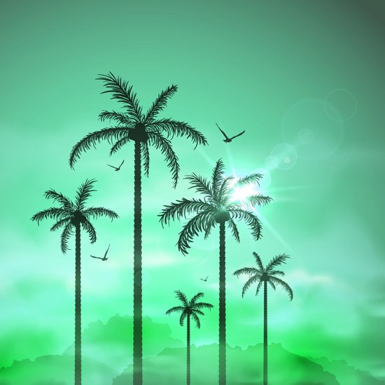 Palm Silhouette 9  Art Print