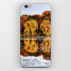 Rock Cut State Park iPhone & iPod Skin