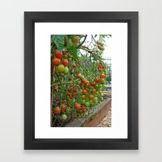 Hot 100 Framed Art Print