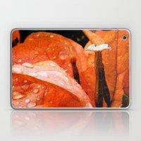 Tangerine Dreams Laptop & iPad Skin