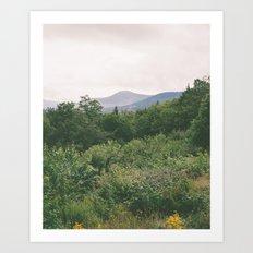 i'm just a flower among mountains Art Print