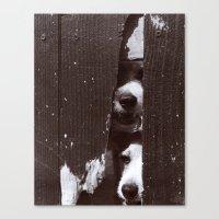 Through Thick & Thin Canvas Print