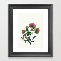 Flor 3 Framed Art Print