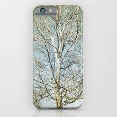 Tree 5 iPhone 6 Slim Case
