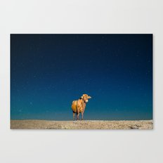 Space Cow Canvas Print