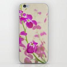 Evening Stock iPhone & iPod Skin