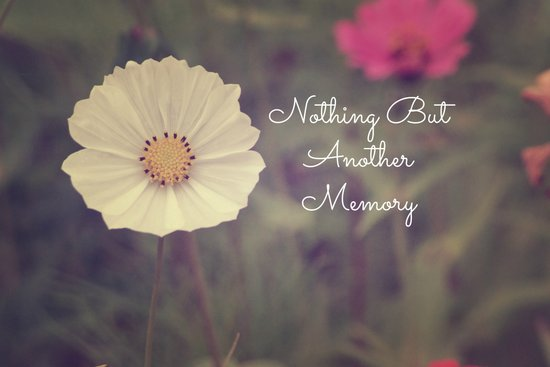 Nothing But Another Memory Art Print