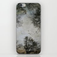 Lost in the Woods iPhone & iPod Skin