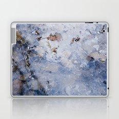 frozen lakes II Laptop & iPad Skin