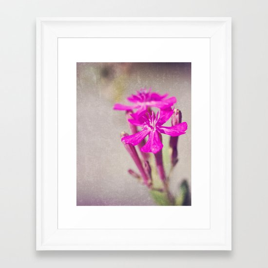 Pink  Framed Art Print