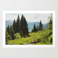 The Forest And The Fjord… Art Print