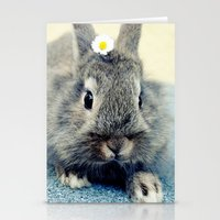 bunny Stationery Cards featuring Bunny by Falko Follert Art-FF77