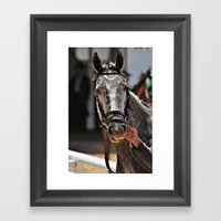Curious Grey Framed Art Print