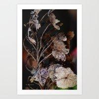 Lace Leaves Art Print