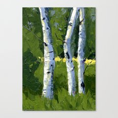 Aspens - Catching the Light Canvas Print