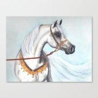 Egyptian Arabian Stallio… Canvas Print