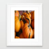 Vector Style Harvest Of … Framed Art Print