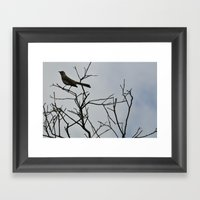 Nestling Framed Art Print