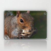 Squirrel's Lunch  Laptop & iPad Skin
