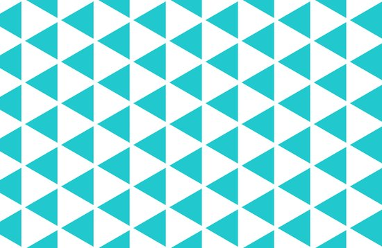 Sleyer Blue on White Pattern Canvas Print