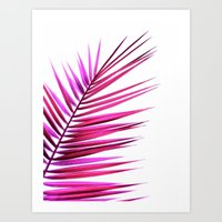 Pink Palm Leaf II Art Print