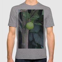 APPLE Mens Fitted Tee Athletic Grey SMALL