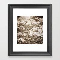 Roaming Through Wild Flower Fields Framed Art Print