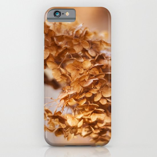 Winter Hydrangea iPhone & iPod Case