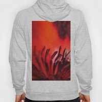 Abstract Red Poppy Hoody