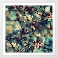Vintage Blossoms - Tript… Art Print
