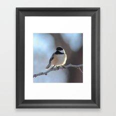 Chickadee Sunshine Framed Art Print